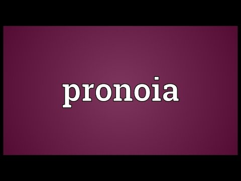 Pronoia Meaning