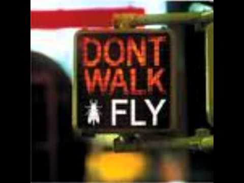 Israel Kamakawiwo'ole - The Fly
