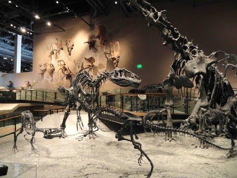 Natural History Museum  - Travel Thru History, Salt Lake City, Utah