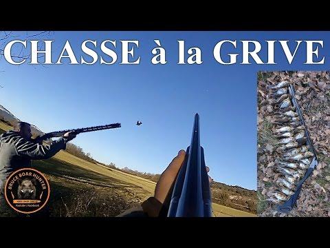 """Best Of """" Chasse à La Grive Au Vol """" : Saison 2016/17"""