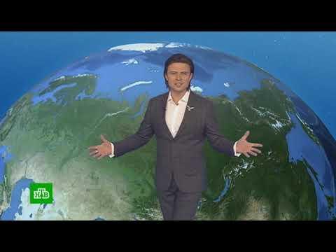 Погода сегодня, завтра, видео прогноз погоды на 12.5.2019 в России