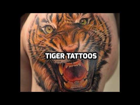 Tiger Tattoos Best Tiger Tattoo Designs In The World Youtube