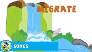 SONGS   Hibernate, Migrate   PBS KIDS