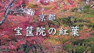 京都、嵯峨野にある宝筐院。平安時代に白河天皇によって建てられました...
