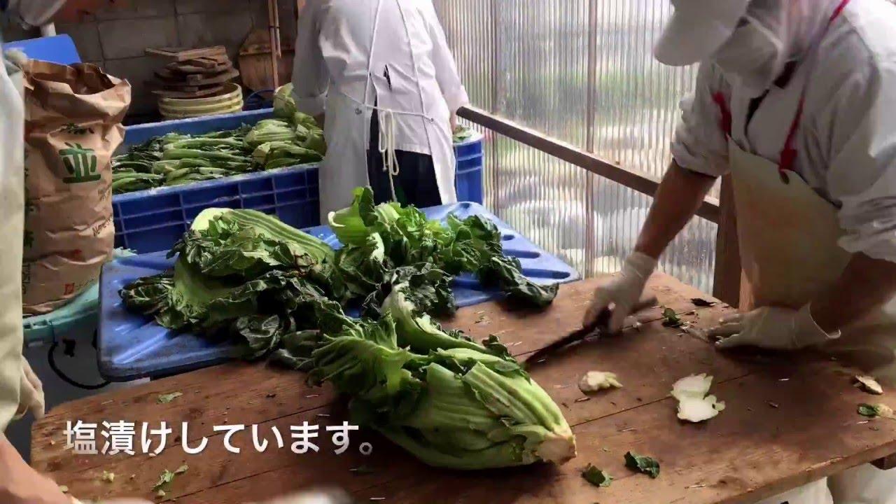 漬け方 高菜 の