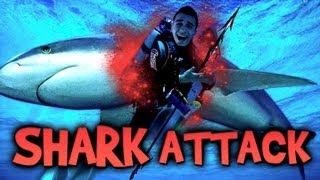 SHARK ATTACK ! - Le Call of Duty : Ghosts des habitants de l