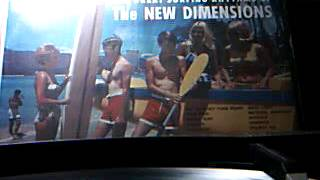 The New Dimensions -  Bongo Surf - LP cut