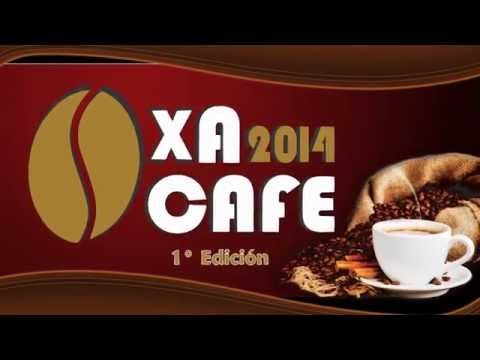 SPOT OXA CAFE M.P.O 2014