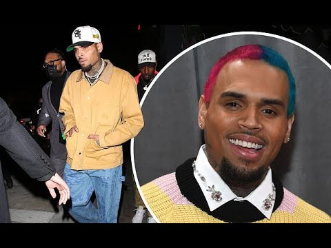 Chris-Brown-gets-sued-by-cleaning-lady-who-claims-dog-attacked-sister