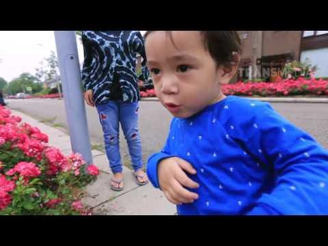 JANJI SUCI - Ransfathar Liburan Ke Belanda (18/06/2017) Part 1