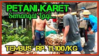 Download HARGA GETAH KARET BULAN OKTOBER 2020