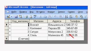 11_3.3 теорія.СУБД MS Access. Об'єкти. Маска