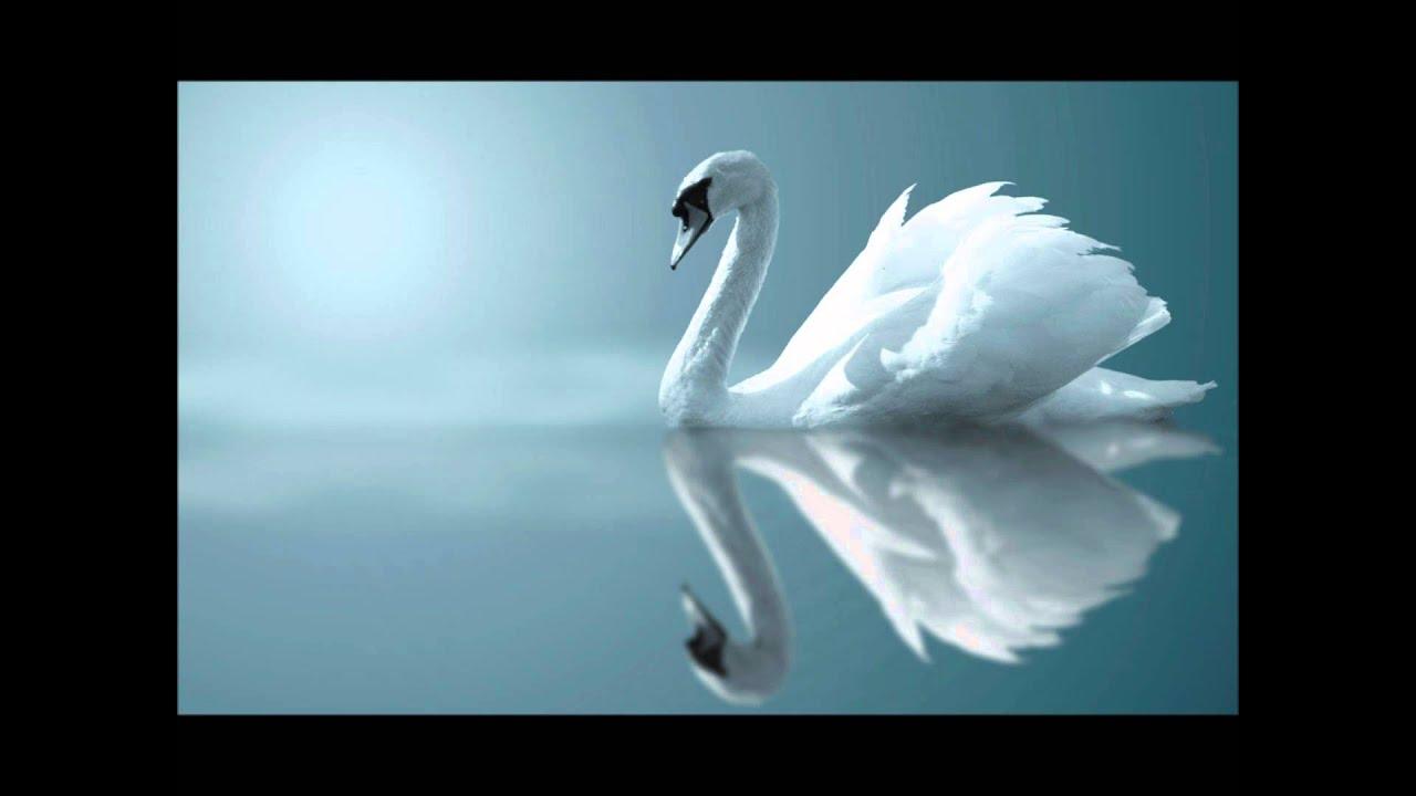 Скачать красивую лирическую мелодию