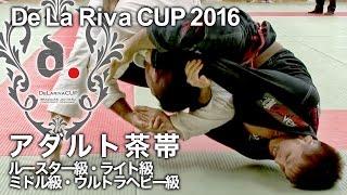 【ヒカルド・デラヒーバ杯2016】アダルト茶帯階級別