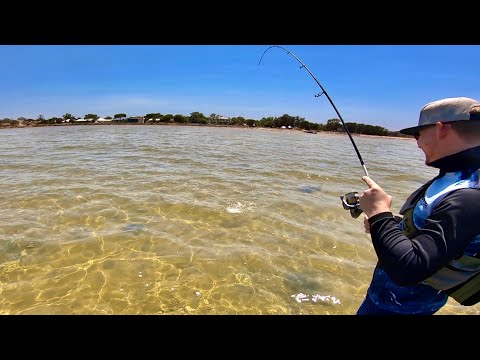 Surface Fishing The Flats For Whiting