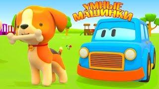 Умные машинки учат животных для малышей - Мультики про машинки - Игры развивающие