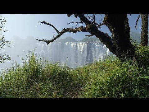 Zambia in 8K [Africa]