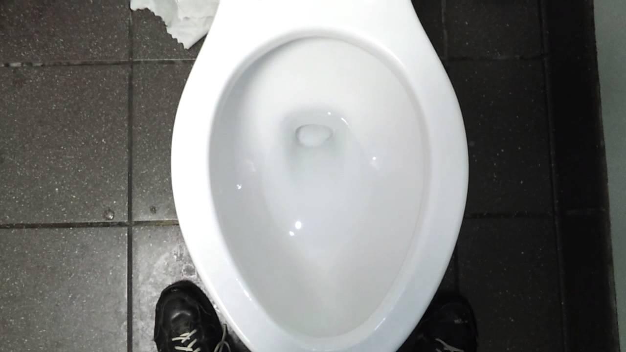 Bathroom Tour Crane toilet at wendys  YouTube