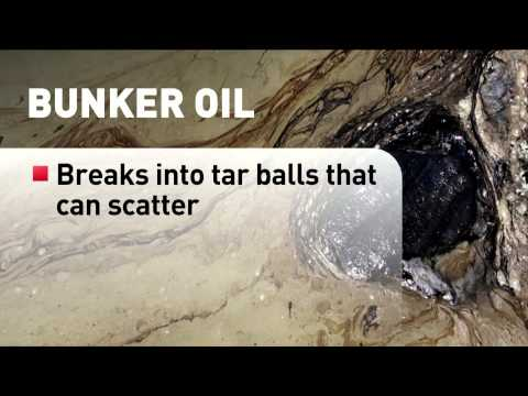 What is bunker fuel and why it's an environmental nightmare