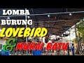 Lomba Burung Lovebird Dan Murai Batu Di Metro Lampung  Mp3 - Mp4 Download