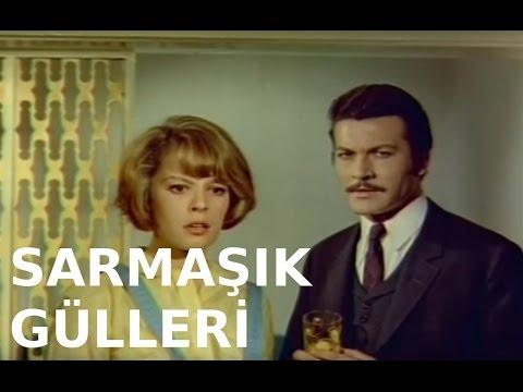 Nalan Altınörs/Sarmaşık Gülleri..