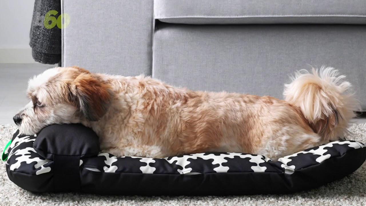 Cuccia Cane Grande Ikea ▷ cuccia per cani ikea | nuova linea lurvig 2019!