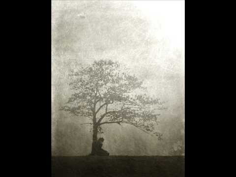 Leaves EyesMourning Tree