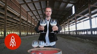 Meet the World's First Milk Sommelier