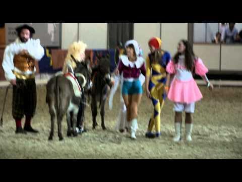 Воспоминания детства. Конный театр Чардаш на Эквиросе