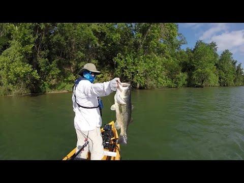 LAKE AUSTIN BASS FISHING
