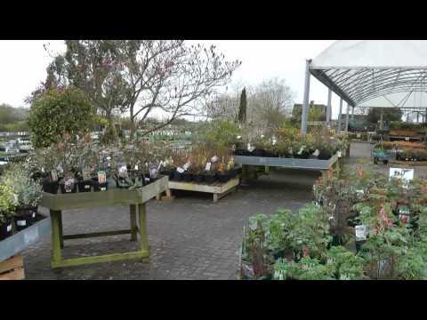Hill Top Garden Centre