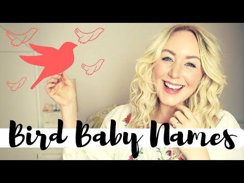 10 Bird Baby Names for girls and boys | SJ STRUM BABY NAME MONDAYS