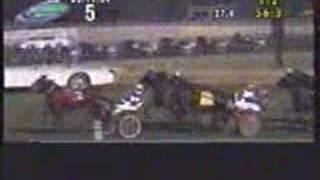 Horse Divorce Race HoneyMoon is Over Downs