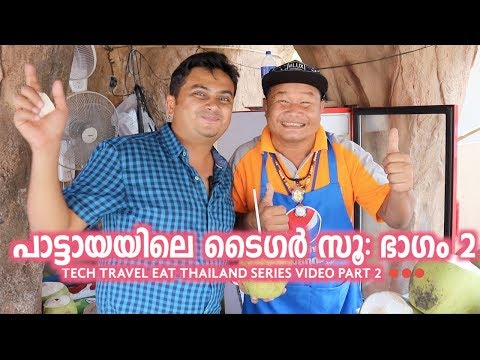 Tiger Zoo Part 2 - Pattaya - Tech Travel Eat Thailand Malayalam Video Part 3