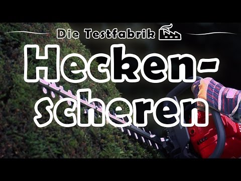 ✂️ Akku Heckenschere Test – 🏆 Top 3 Akku Heckenscheren im Test