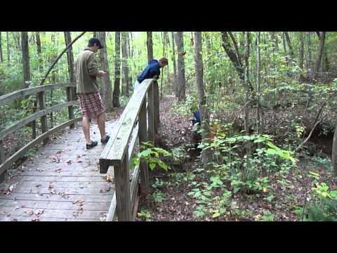 Walk at Mt. Tabor Park III