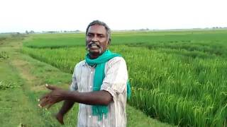 Thiru.C.Karikalan Part 11  Agriculture and today's youth