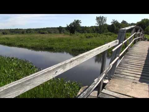 Little Pond Boardwalk, Litchfield CT