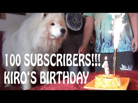 How To Make A Dog Birthday Cake