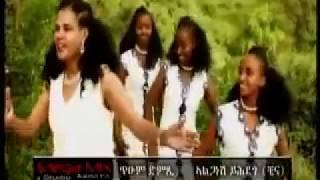 eritrean traditional song tium dimxi alganesh yehdego