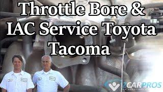 Throttle Bore & IAC Service Toyota Tacoma 1995-2004
