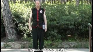 Choy Li Fut. Técnicas Básicas de Kung Fu 1/2