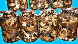 Мамин рецепт консервированных грибов Все Просят Рецепт КОНСЕРВАЦИЯ МАРИНОВАННЫЕ ГРИБЫ на ЗИМУ