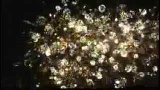 Фейерверк г. Жмеринка День города 05.08.2012г.