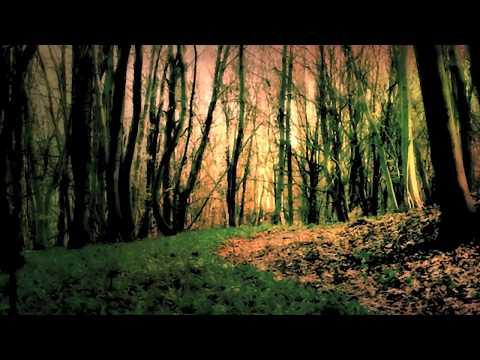SONO ASSENTE - Laura Paternostro [Official Video]