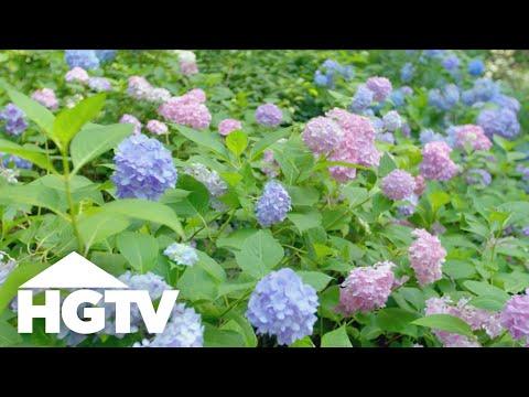 Garden Tours | Serene Sculpture Garden Tour - HGTV
