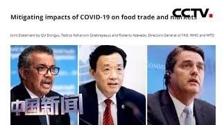[中国新闻] 三家联合国机构总干事呼吁防止疫情引发粮食危机   新冠肺炎疫情报道