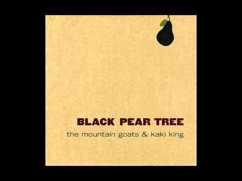 Thank You Mario But Our Princess Is In Another Castle - The Mountain Goats & Kaki King