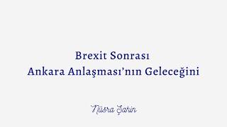 Nusra Sahin, Brexit sonrasi Ankara Anlasmasi'nin gelecegini yorumluyor
