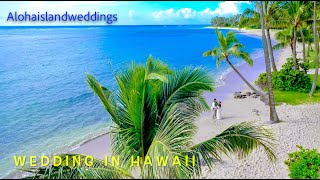Hawaii Wedding   Avi & Jonah   Wedding teaser   Alohaislandweddings.com